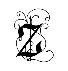 letter z with arrows vector image