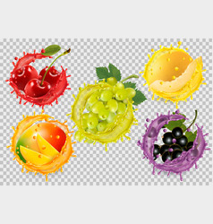 set fruit in juice splash grapes cherry vector image