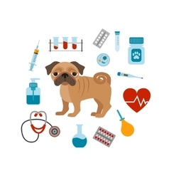 Vet cartoon concept vector image vector image