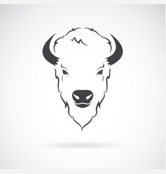 Buffalo head design on white background wild vector