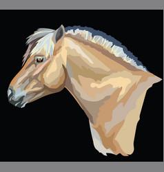 Colored norwegian fjord pony vector