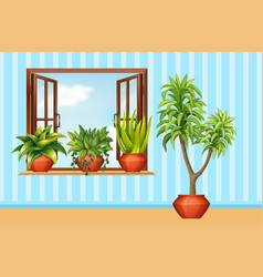 different plants in claypot in the room vector image