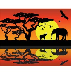 elephants in africa near water vector image