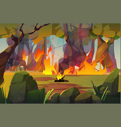 Fire in camping and burning forest wildfire vector