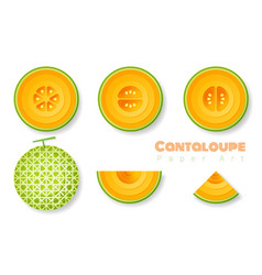 Set of cantaloupe melons in paper art style vector