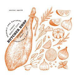 Vintage meat hand drawn jamon spices and herbs vector