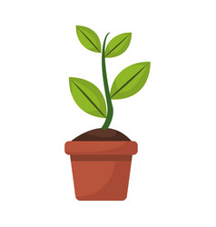 Potted plant garden botanical element vector