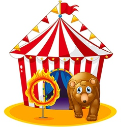 A red tent at the back of a bear and a flaming vector image vector image