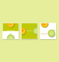 Cantaloupe melon in paper art style banners vector