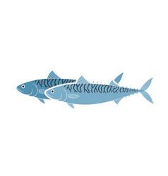 mackerel vector image