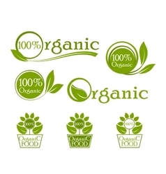 Organic iconic set label design vector image