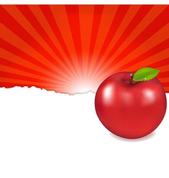 Red Apple And Sunburst vector image