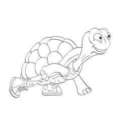 Turtle in sneakers vector