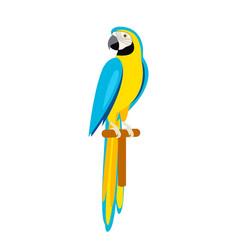 cartoon cute parrot beautiful ara parrot vector image