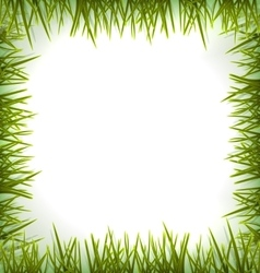 Realistic green grass like frame isolated on white vector image vector image