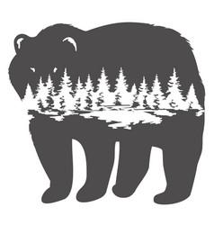 A bear vector