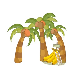 A view of palm trees vector image
