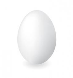 duck egg vector image