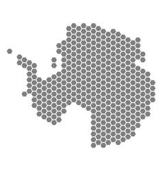 Gray hexagon antarctica map vector