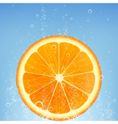 orange in water vector image