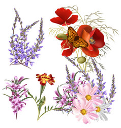set detailed colored flowers vector image