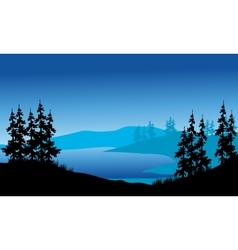 Silhouette of spruce on the backgrounds blue vector