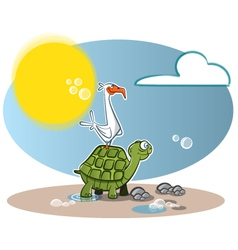 Turtle seagul vector