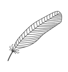 Black hand drawn feather vector image vector image