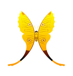 colorful yellow butterfly with abstract decorative vector image