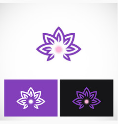 beauty lotus flower logo vector image