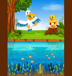 Cute pelican and duck in the river vector