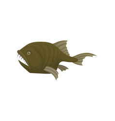 Small monkfish with sharp teeth side view vector