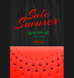 summer sale banner with watermelon on wooden vector image