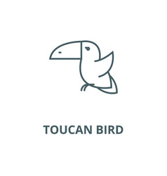toucan bird line icon linear concept vector image