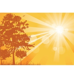 Yellow summer background with rays vector