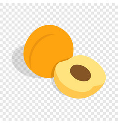 Fresh apricot fruits isometric icon vector