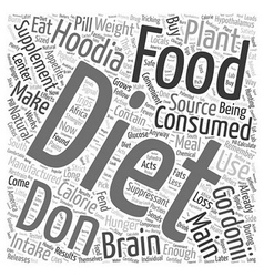 hoodia diet supplement Word Cloud Concept vector image vector image