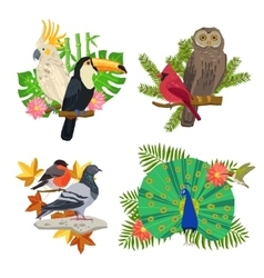 Birds And Flowers Set vector image