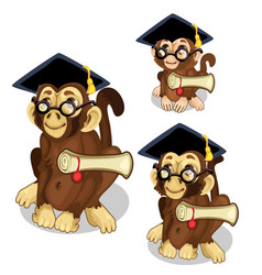 Monkeys in academic cap animal vector