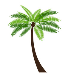 palm simple icon leaf on white background vector image