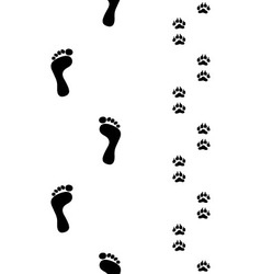 Prints of feet and paws vector