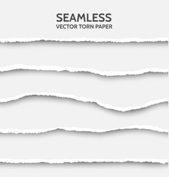 seamless torn paper set on gray background vector image
