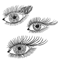 Set of the abstract hand drawn human eyes vector image