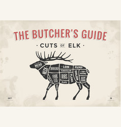 Butcher diagram scheme - elk vector