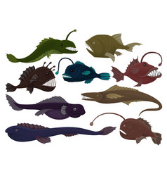 Flat set of different predatory fishes sea vector
