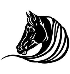 Head black horse vector