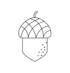 isolated acorn design vector image