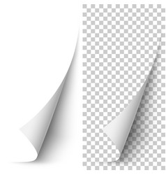 White vertical paper corner rolled up vector