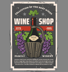 Winery and wine shop bottle and grape bunches vector