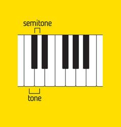 Piano keyboard tone and semitone music theory vector